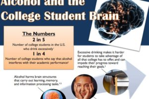 Alcohol and the College Student Brain