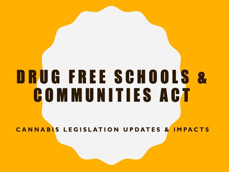 Drug Free Schools and Communities Act: Cannabis Legislation Updates and Impacts.